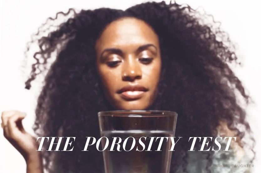 Types Of Hair Porosity Hair Porosity Test Carol S Daughter