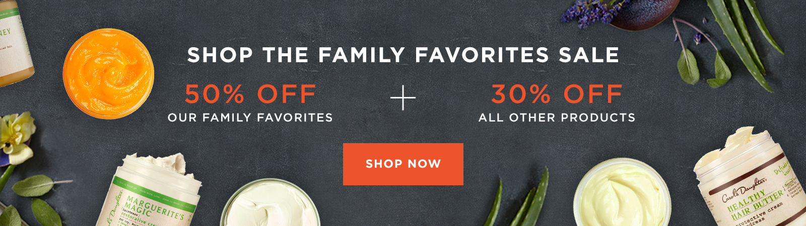 30% Off Sitewide. 50% Off Family Favorites. Shop Now.
