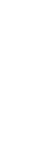 Curl Type Chart - 3B
