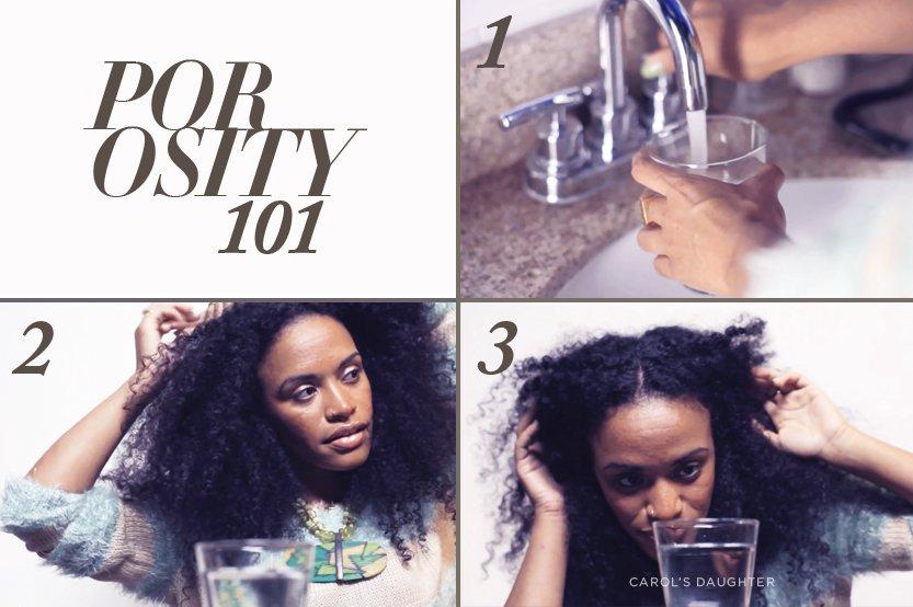 Types Of Hair Porosity Hair Porosity Test Carols Daughter
